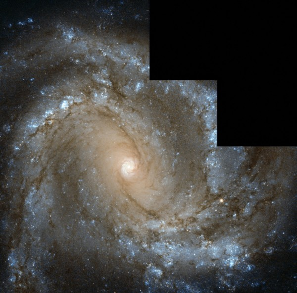In the Center of Spiral Galaxy M61