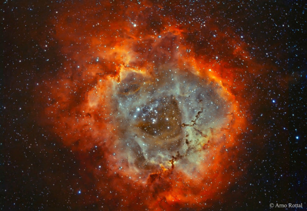 The Rosette Nebula in Hydrogen and Oxygen