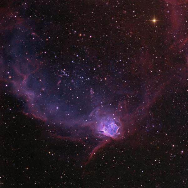 NGC 602 in the Flying Lizard Nebula