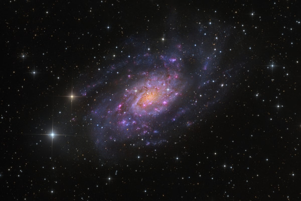 NGC 2403 in Camelopardalis