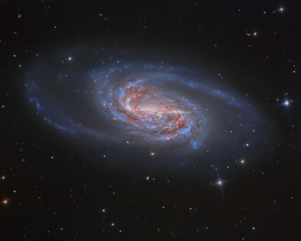 NGC 2903: A Missing Jewel in Leo