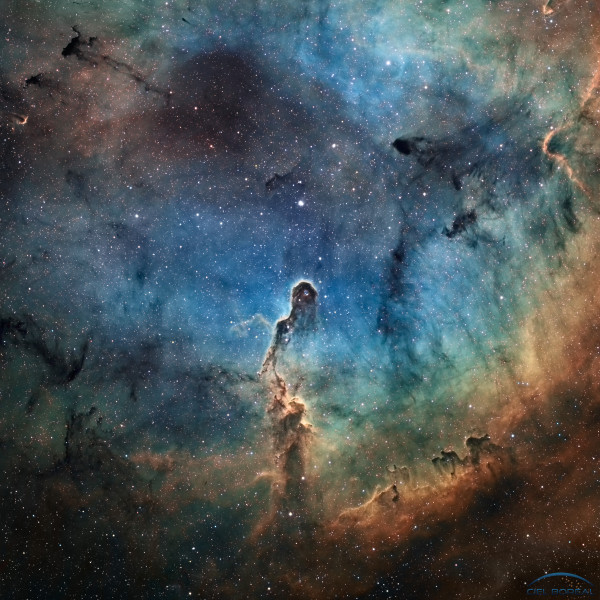 The Elephant's Trunk in IC 1396