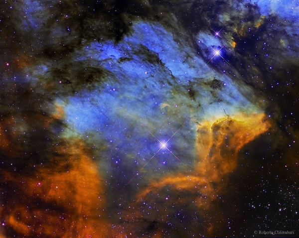 The Pelican Nebula in Gas, Dust, and Stars