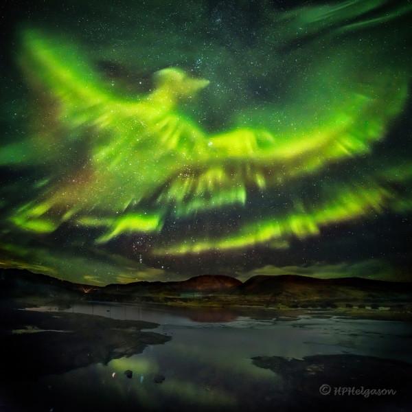 A Phoenix Aurora over Iceland