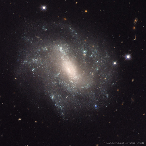 The Supernova and Cepheids of Spiral Galaxy UGC 9391
