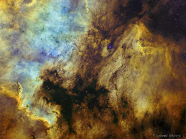 The North America and Pelican Nebulas