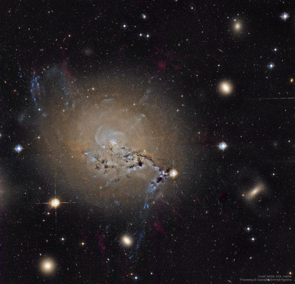 Filaments of Active Galaxy NGC 1275