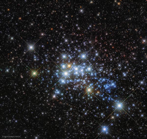 The Massive Stars in Westerlund 1