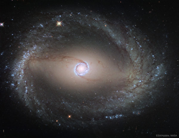 Spiral Galaxy NGC 1512: The Inner Ring