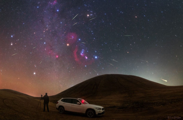 Orionid Meteors from Orion